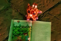 Giraffa-con-librino-Firenze